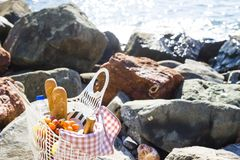 Rest by the sea with grapes, apples, pears, baguettes, wine and a basket on the coverlet Royalty Free Stock Photos
