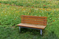 A rest seat in the park Royalty Free Stock Photo