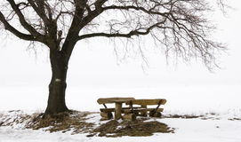 Rest Seats in a winter Landscape. With Fog Royalty Free Stock Images