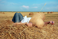 Rest on straw Royalty Free Stock Image