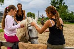 Rest in the summer children`s equestrian camp in Ukraine Royalty Free Stock Photos