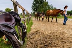 Rest in the summer children`s equestrian camp in Ukraine. Vynohradiv, Ukraine - July 12, 2017: Girls lead the horses during a vacation in the summer children`s Stock Photos