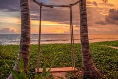 Rest on the swing. Palm swing on a background of sunset and ocean Stock Photo