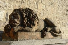 Sleeping lion. In Assisi, Italy, a lion made of stone, rests out of a church, illuminated by the light of the sunset Stock Images