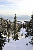 Restant sur la montagne snow-covered, BC Photographie stock