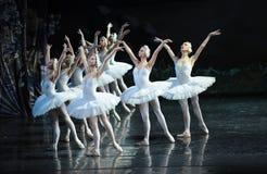 Restare in attesa da essere lago swan di conservare-balletto Immagine Stock