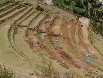 Restauración de las terrazas del inca Foto de archivo libre de regalías