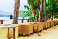 Restauracja na wybrzeżu z drzewkami palmowymi Obraz Royalty Free