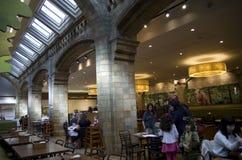 Restaurang i naturhistoriamuseet London Arkivbilder