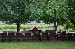 Restaurang i vinodling i sommar royaltyfria foton
