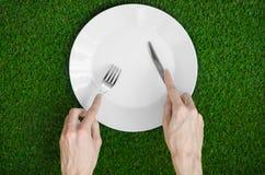 Restaurang och nya frukt och grönsaker på naturtemat: den mänskliga handen visar plattan på en bakgrund av överkant V för grönt g Arkivfoto