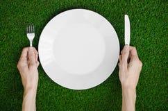 Restaurang och nya frukt och grönsaker på naturtemat: den mänskliga handen visar plattan på en bakgrund av överkant V för grönt g Royaltyfri Fotografi