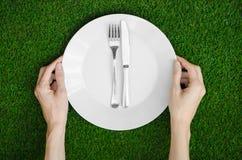 Restaurang och nya frukt och grönsaker på naturtemat: den mänskliga handen visar plattan på en bakgrund av överkant V för grönt g Arkivfoton