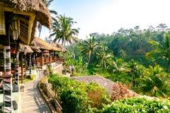 Restauranger vid risterrassen i Bali Arkivbilder