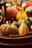 Restaurant autumn place setting Stock Images