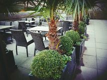 Restaurant bar bistro plains green table chairs. Palms pot flowerpot wicker outside outdoor Royalty Free Stock Photography