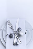 Restaurant Christmas table set Royalty Free Stock Photos