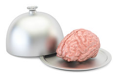 Restaurant cloche with brain, 3D. Rendering Royalty Free Stock Images