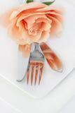 Restaurant Dinner Arrangement Set Plate with Silverware Orange R Stock Photos