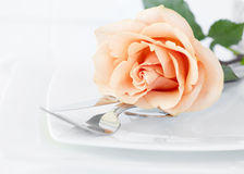 Restaurant Dinner Arrangement Set Plate Silverware Orange Rose Stock Photos