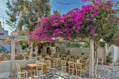Restaurant with flowers on the island of Mykonos, Cyclades Islands. Greece Stock Images