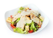 Restaurant food isolated - chicken caesar salad Stock Image