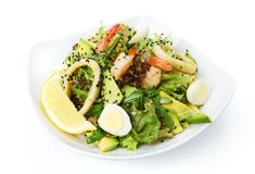 Restaurant food  - seafood salad with calamari rings Royalty Free Stock Images