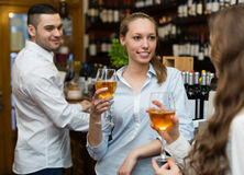 Restaurant guests at tavern Royalty Free Stock Photo