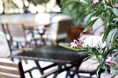 Restaurant, koffie, bistro, pizzeria Royalty-vrije Stock Foto