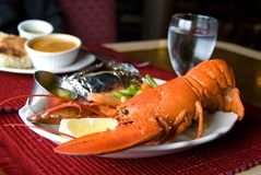 Restaurant Lobster Dinner Stock Photos