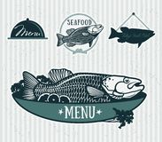 Restaurant menu design elements set. Cooked fish and raw vegetables on a plate Royalty Free Stock Images