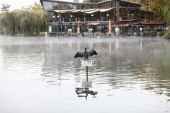 restaurant op het meer royalty-vrije stock foto
