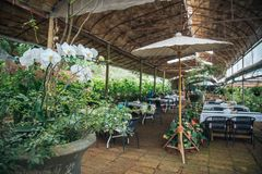 Restaurant in roze gardent stock foto's