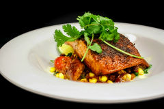 Restaurant salmon Entree. A restaurant salmon entree plate against a black backdrop Stock Images