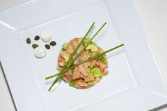 Restaurant salmon tartar Royalty Free Stock Images