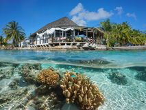 Restaurant on sea shore coral underwater Rangiroa. Restaurant on the sea shore with coral and fish underwater, split view above and below water surface, Rangiroa Stock Image