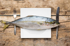 Restaurant seafood menu background Royalty Free Stock Image