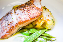 Restaurant Style Salmon Dinner Stock Image