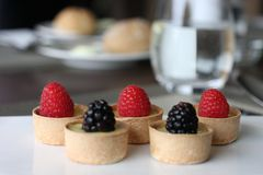 Restaurant sweet bites, small sweet berrie cups. Restaurant sweets for cofee brake, pastry cups with lemon curd filling and wild summer berries royalty free stock photo