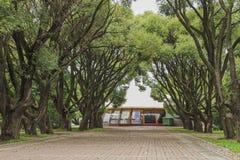 Restaurant unter alten Bäumen lizenzfreie stockfotografie