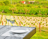 Restaurant with vineyard Royalty Free Stock Image