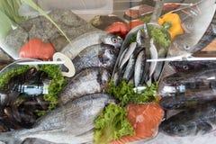 Restaurante dos peixes frescos, Creta Grécia imagem de stock royalty free