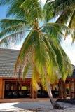 Restaurante en la isla tropical Imagenes de archivo