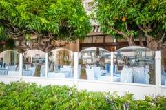 Restaurante francés con los árboles anaranjados. Imagen de archivo libre de regalías