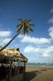 restaurante Nicarágua do telhado thatched da praia foto de stock royalty free