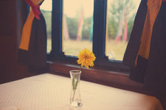 Restauranthoek Royalty-vrije Stock Fotografie