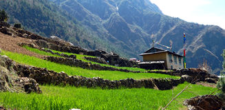 Restaurants and Hotels in the Khumbu, Nepal Royalty Free Stock Photography