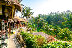 Restaurants by Rice Terrace in Bali. Stock Images