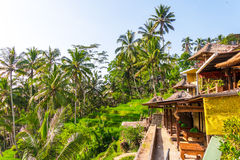 Restaurants by Rice Terrace in Bali. Royalty Free Stock Photo