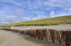 Restauration dunaire photo libre de droits